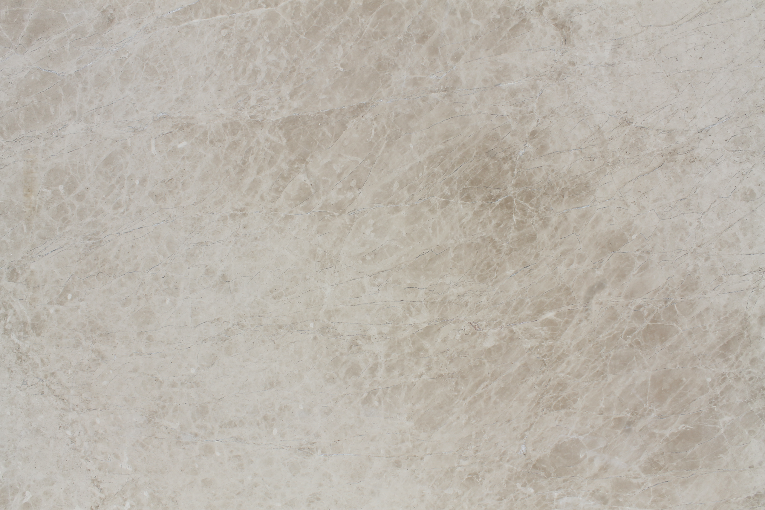 Close up picture of eastern cream honed slab in order for customers to get a better look at the stone